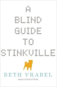 blind guide