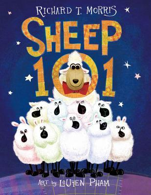 sheep101