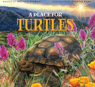 place for turtles