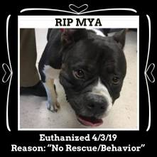 RIP Mya