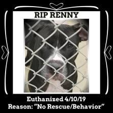 RIP Renny